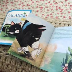 Micro Buch ,,Salabim findet...